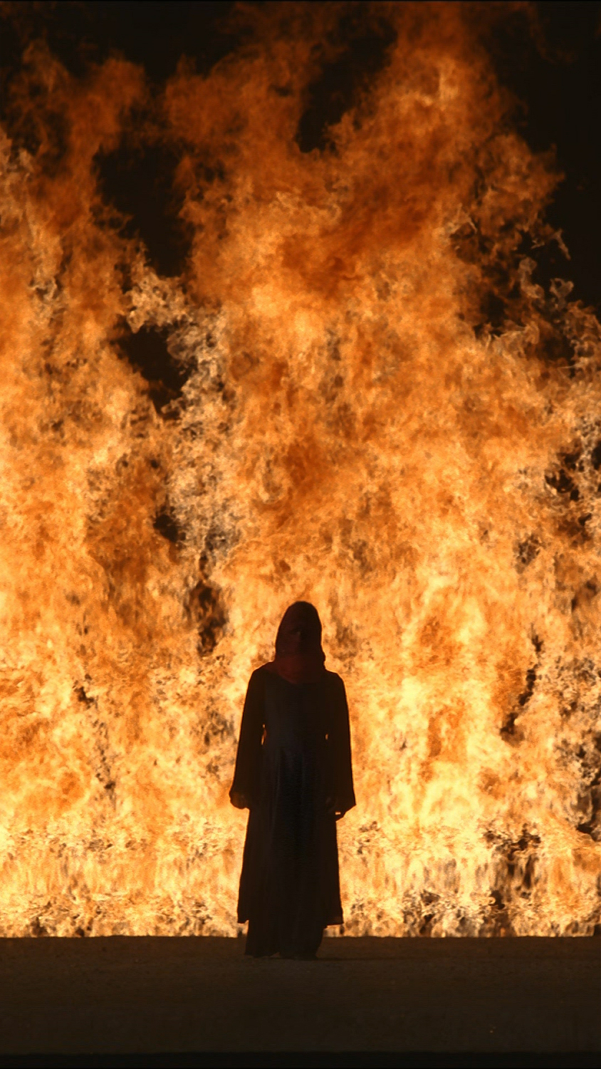 fire-woman-2005-©-kira-perov-courtesy-bill-viola-studio