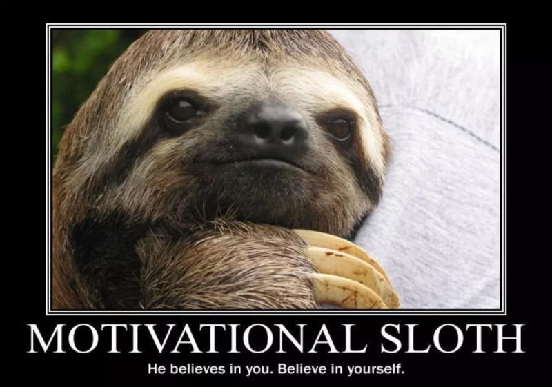Motivational sloth